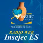 Logo da emissora Rádio Web Insejec ES