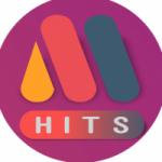 Logo da emissora Rádio Mega Hits FM