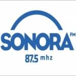 Logo da emissora Rádio Sonora 87.5 FM