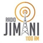 Logo da emissora Radio Jimaní 1100 AM