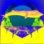 Logo da emissora Piraju FM Web