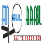 Logo da emissora Rádio FM Sul Brasil