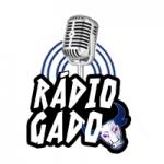 Logo da emissora Rádio Gado
