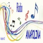 Logo da emissora Rádio Anapolina