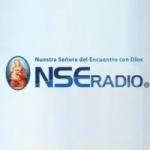 Logo da emissora NSE Radio 590 AM
