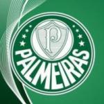 Logo da emissora Rádio Palmeira FM