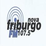 Logo da emissora Rádio Nova Friburgo FM 107.5