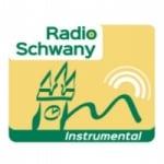Logo da emissora Radio Schwany Instrumental