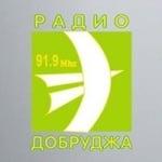 Logo da emissora Radio Dobrudja 91.9 FM