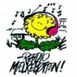 Logo da emissora Radio Maelkebotten