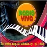 Logo da emissora Radio Viva Rock NL