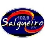 Logo da emissora Rádio Salgueiro 102.9 FM
