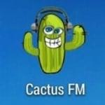 Logo da emissora Rádio Cactus 87.9 FM