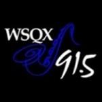 Logo da emissora WSQX 91.5 FM