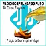 Logo da emissora Rádio Gospel Nardo Puro
