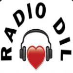 Logo da emissora Radio Dil 96.3 FM