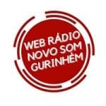 Logo da emissora Rádio Novo Som Gurinhem