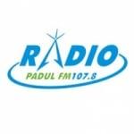 Logo da emissora Radio Padul 107.8 FM