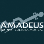 Logo da emissora Radio Amadeus 91.1 FM