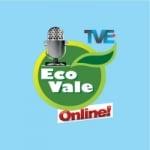 Logo da emissora Portal Ecovale
