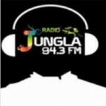 Logo da emissora Radio Jungla 94.3 FM