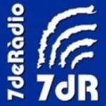 Logo da emissora 7 De Radio 91.7 FM