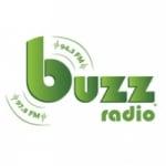 Logo da emissora Radio Buzz 94.3 FM