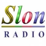 Logo da emissora Radio Slon 89 FM