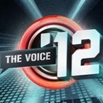 Logo da emissora Radio The Voice 104.4 FM