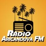 Logo da emissora Rádio Aricanduva 87.9 FM