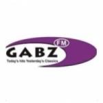Logo da emissora Radio Gabz 96.2 FM