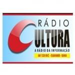 Logo da emissora Rádio Cultura 1530 AM