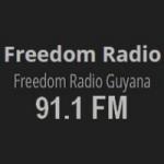 Logo da emissora Radio Freedom 91.1 FM