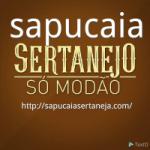 Logo da emissora Rádio Sapucaia Sertaneja