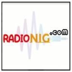 Logo da emissora Rádio Nig