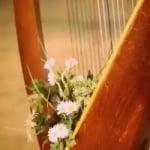 Logo da emissora Radio Art Solo Harp
