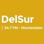Logo da emissora Radio DelSur 94.7 FM
