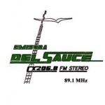 Logo da emissora Radio del Sauce 89.1 FM