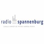 Logo da emissora Spannenburg 96.4 FM