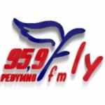Logo da emissora Radio Fly FM 95.9