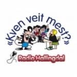 Logo da emissora Radio Hallingdal 106.7 FM