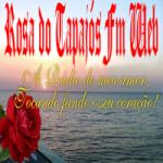 Logo da emissora Rádio Rosa dos Tapajós