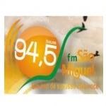 Logo da emissora Rádio São Miguel
