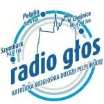 Logo da emissora Radio Glos 91.4 FM