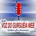 Logo da emissora Rádio Voz Do Gurguéia Web
