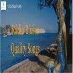 Logo da emissora Rádio Búzios Quality Songs