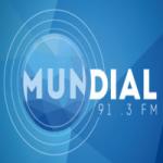 Logo da emissora Rádio Mundial 91.3 FM