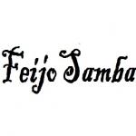 Logo da emissora Rádio Feijo Samba