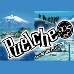 Logo da emissora Radio Puelche 90.5 FM