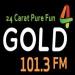 Logo da emissora Radio Gold 101.3 FM